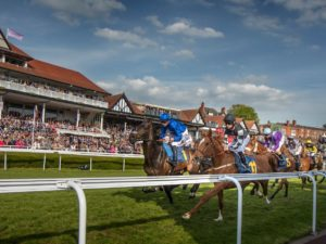 Crowds set to burst through the stalls for City Plate Day this Saturday