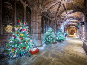 CHRISTMAS TREE FESTIVAL LIGHTS UP CHESTER CATHEDRAL CLOISTERS FOR A SIXTH MAGNIFICENT YEAR