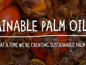 Chester named world's first Sustainable Palm Oil City